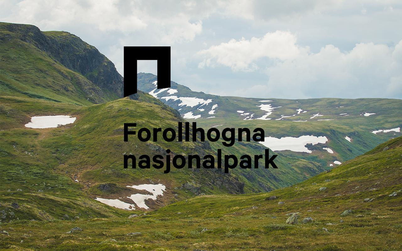 Forollhogna Nasjonalpark