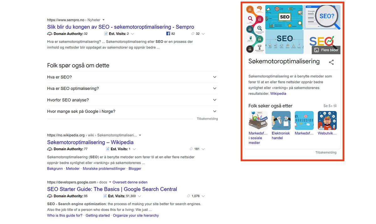 kunnskapspanel google
